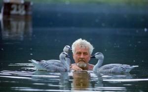 Konrad Lorenz Swims Geese